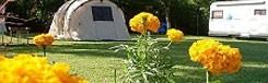 Arena Camping: mooie locatie en heel gastvrij